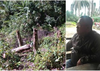 Areal DAS yang rusak dengan pohon-pohon yang ditebangi (kiri), Suatman Assisten di Perkebunan PT. Kass Karya Abadi Sejahtera (Foto: AYH-LNT)
